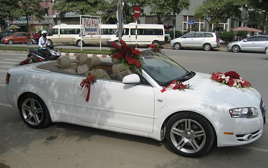 Xe hoa mui trần Audi A4