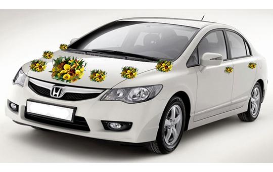 Xe hoa Honda Civic