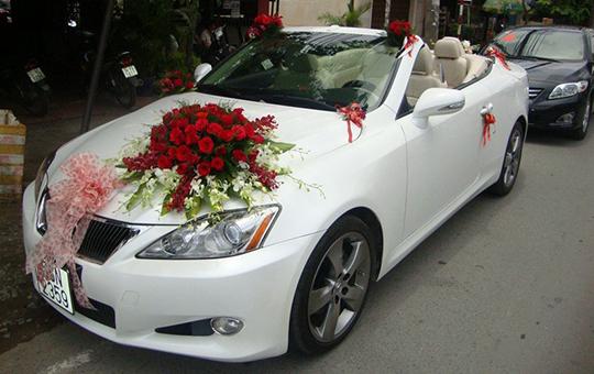 Xe hoa mui trần Lexus IS 250
