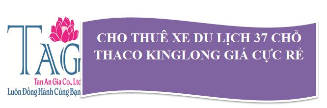 ThaCo_King_Info